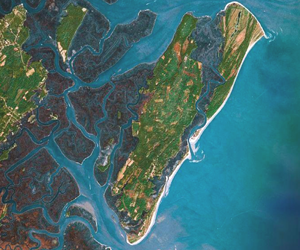 satellite image of Sapelo Island