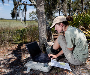 researcher in field on Sapelo Island
